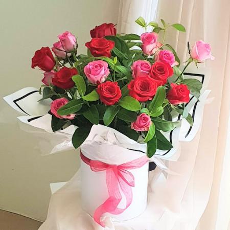 Red N Pink Roses