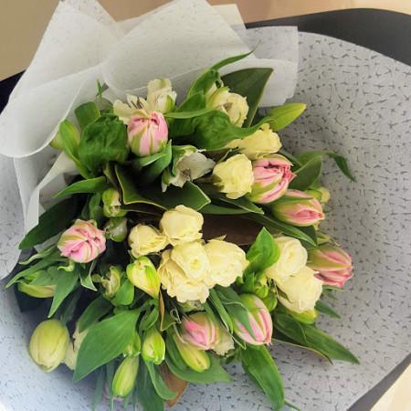 Tulip Tiptoe